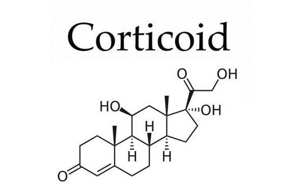 Cấu tạo Corticosteroid