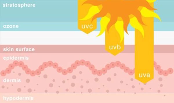 Kem chống nắng là sản phẩm không thể thiếu trong các bước skincare và được xem là quan trọng trong các bước dưỡng da buổi sáng, góp phần bảo vệ làn da khỏi lão hóa và ung thư da. Vậy bạn đã thực sự hiểu vì sao chúng ta cần sử dụng kém chống nắng hàng ngày hay chưa.